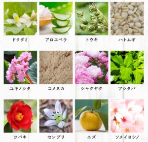 12種の国産和漢エキス+6種の発酵エキス